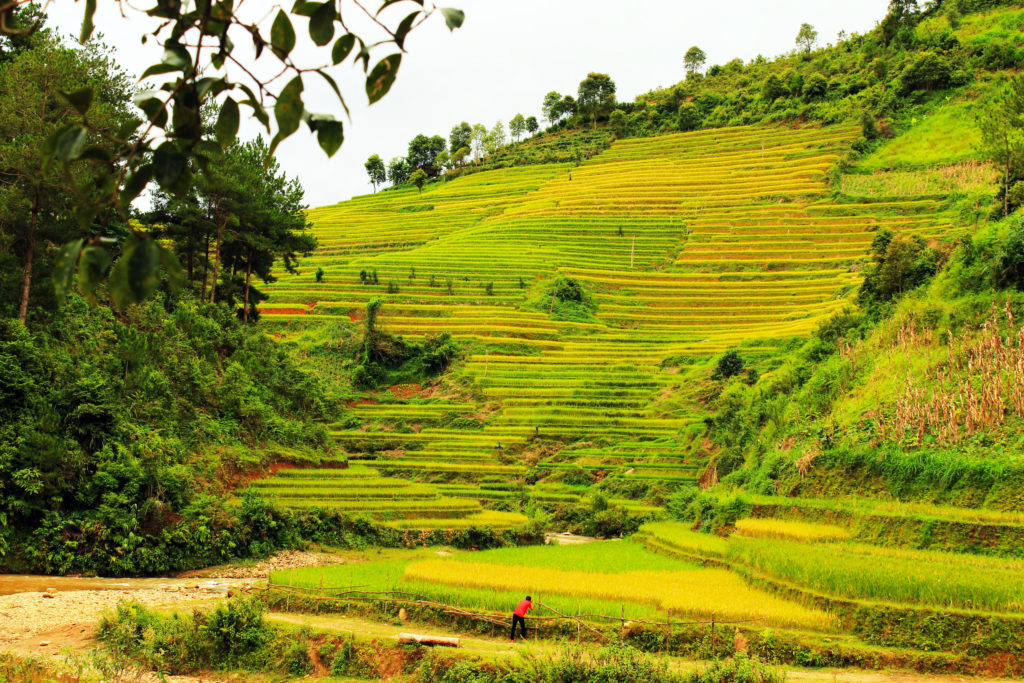 Mu Cang Chai | Vietnam Off the Beaten Track
