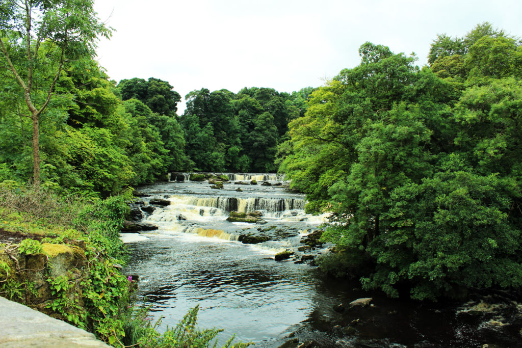 Aysgarth Fall - Yorkshire Dales Tour