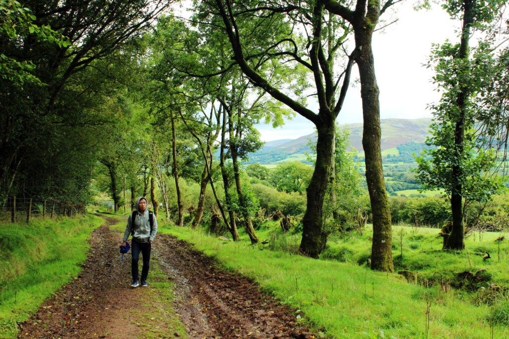 The muddy path leading to Brecon Beacons Visitor Centre | Day trip to Brecon Beacons from Cardiff