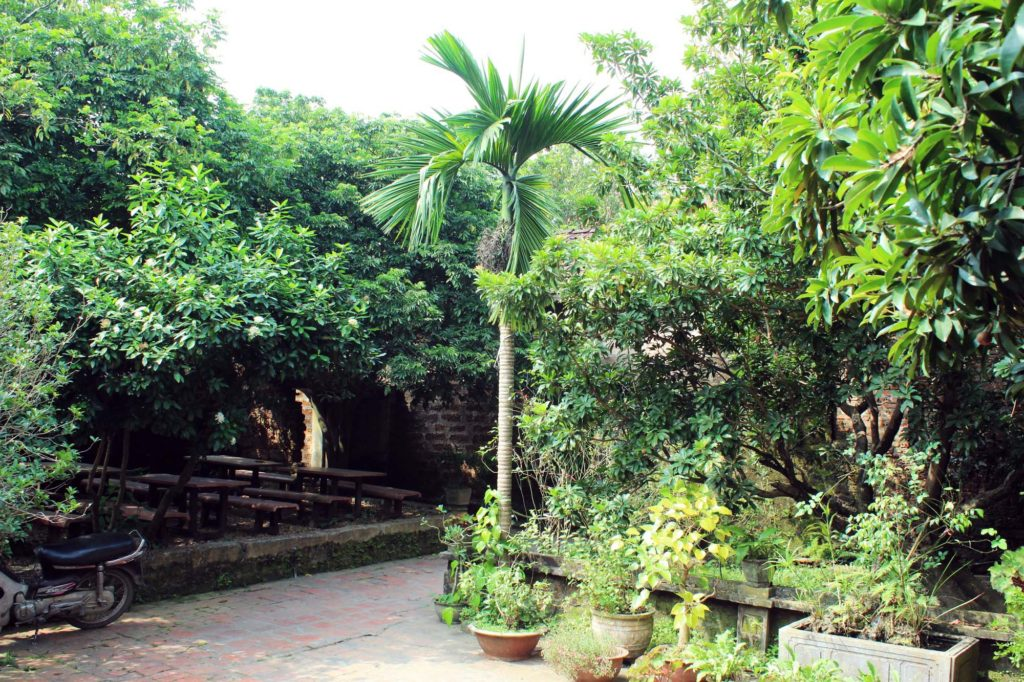 A typical garden at Duong Lam Ancient Village