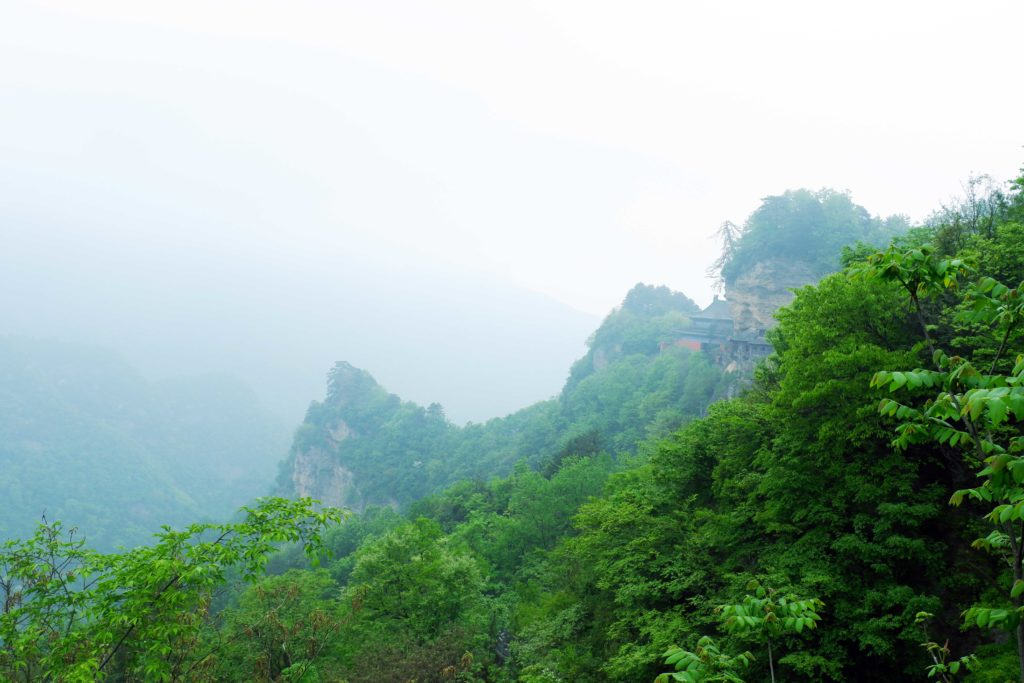 Greenery during the spring on Wudang Mountains