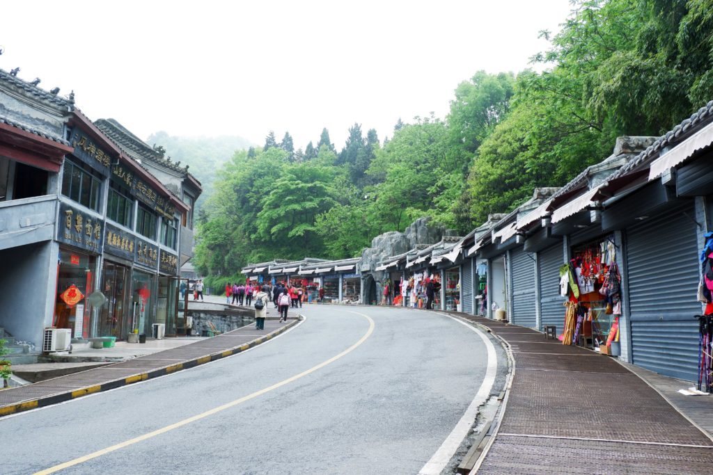 There are local eateries and souvenir shops on both sides of the road in Nan Yan