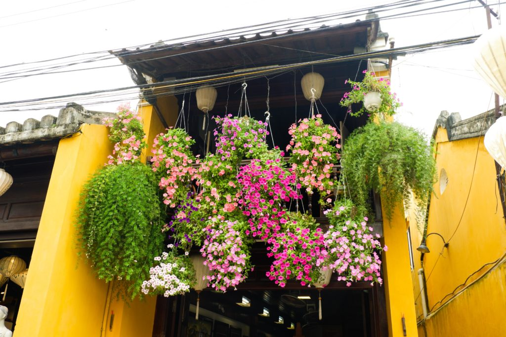 Coffee shops with flowers everywhere